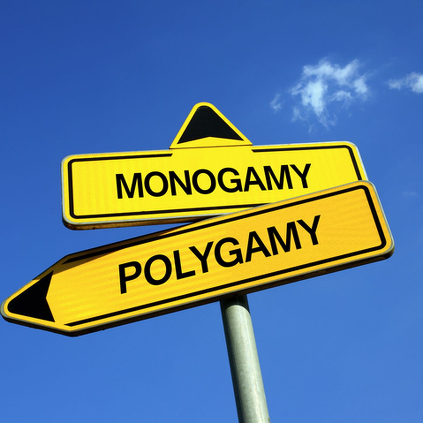 monogamy is useless